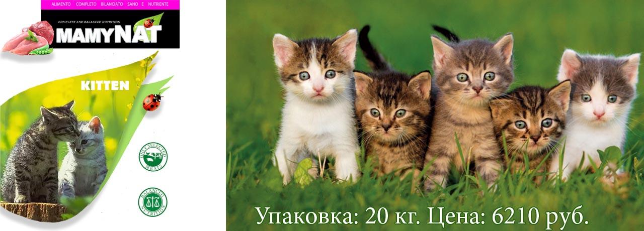 Mamynat Cat Kitten. Для котят
